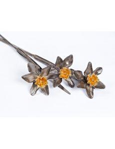 Квіти Нарциси